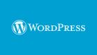 15157 Исключить категории из результатов поиска WordPress